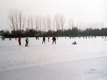 Januari 1985: winter in Seedorf